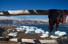 La baia degli iceberg spiaggiati 2