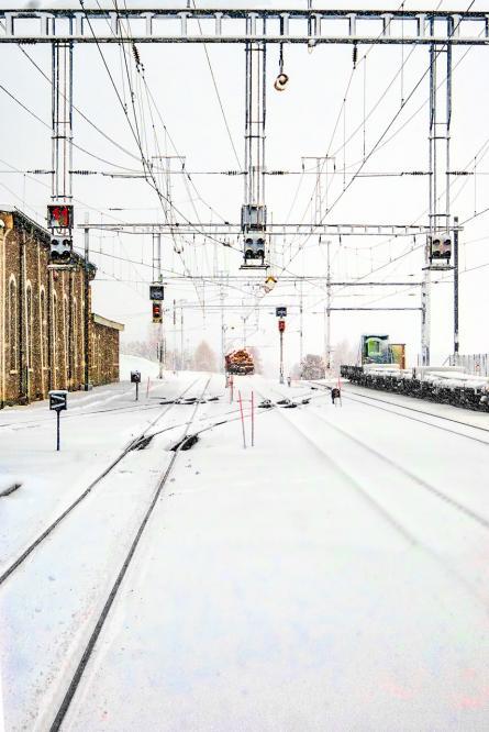 Geometries in the snow