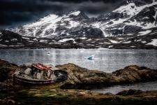 Arctic decay