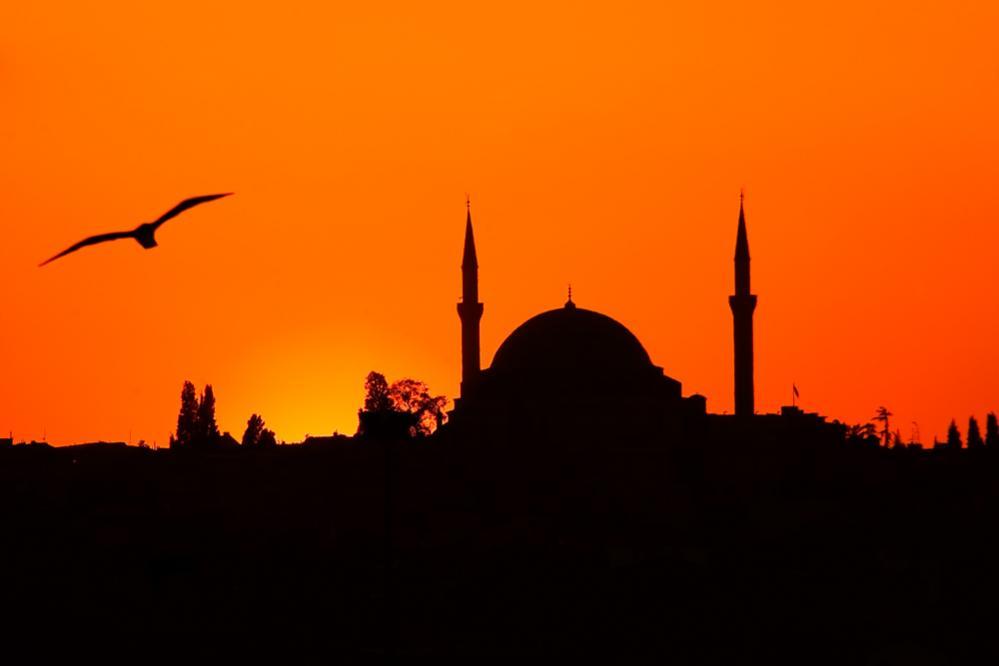 La silhouette della Yavuz Sultan Selim Camii al tramonto si staglia nel cielo infuocato dove volano i gabbiani