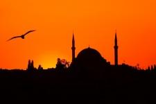 Yavuz Sultan Selim Camii al tramonto con gabbiani