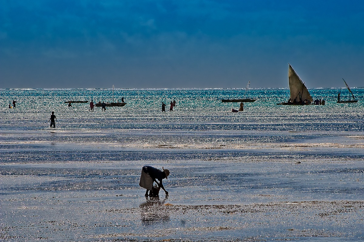 Bassa marea # 4