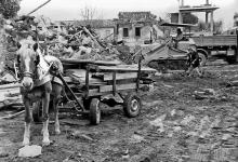 San Michele di Serino - Cavallo Terremoto 1980