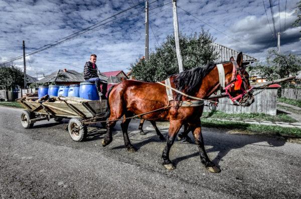 Maramures carri cavalli ed internet - .Mezzi di trasporto.