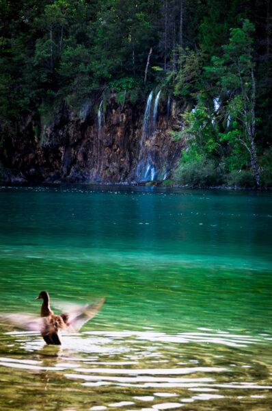 Plitvice Croazia Lago inferiore