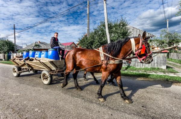 Trasporto in Maramures Romania