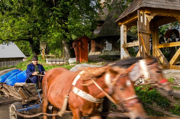Carretto a cavalli Maramures Romania